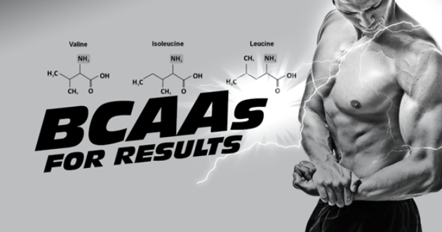 WHY ARE BCAAS SO IMPORTANT?